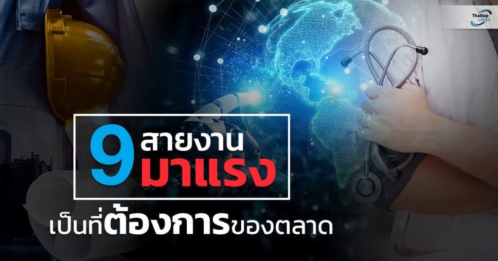ชิปปิ้ง 9 สายงานมาแรง Thaitopcargo ชิปปิ้ง ชิปปิ้ง 9 สายงานมาแรงเป็นที่ต้องการของตลาดในปี 2025 9                                   Thaitopcargo 1024x536
